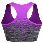 Hyped Sports Womens Bra Quick Dry HBack Yoga Running Fitness Underwear Purple