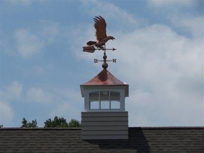 eagle-on-roof.jpg