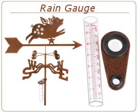 ezv-rain-gauge.png