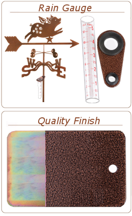 rain-gauge-and-finish-2.png