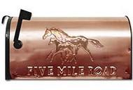 Mailbox - Copper: Mare Foal