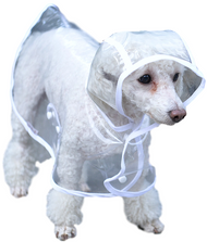 Dog Clear Raincoat