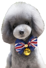 Pet Union Jack Collar