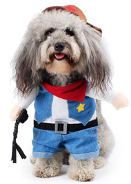 Dog Cowboy Fancy Dress Costume
