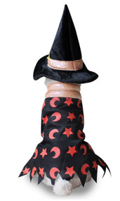 Dog Star Witch Fancy Dress Costume