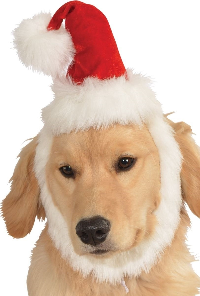 c4fd3c3836441 Dog Santa Hat with Beard - Fancy Me Limited