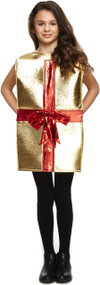 Child's Xmas Gift Fancy Dress Costume