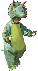 Boys Green Triceratops Fancy Dress Costume