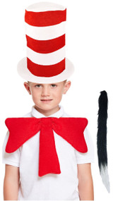 Child's Crazy Cat Fancy Dress Kit