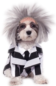 Dog Beetlejuice Fancy Dress Costume