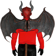 Adults Black Dragon Fancy Dress Wings