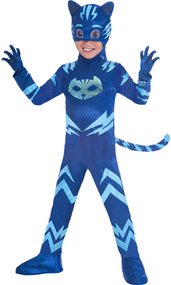 Childs Official PJ Masks Cat Boy Fancy Dress Costume