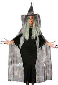 Ladies Grey Witch Fancy Dress Costume Kit