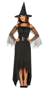 Ladies Traditional Witch Fancy Dress Costume
