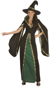 Ladies Wicked Green Witch Fancy Dress Costume