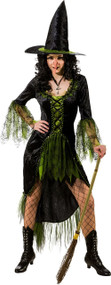 Ladies Green Witch Fancy Dress Costume