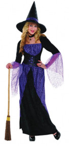 Ladies Pretty Potion Witch Fancy Dress Costume
