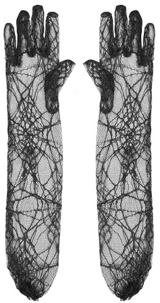 Long Spiderweb Gloves Black Lace Witch Halloween Ladies Fancy Dress Accessory