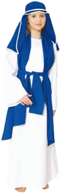 Girls Traditional Virgin Mary Fancy Dress Costume