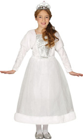 Girls Winter Princess Fancy Dress Costume