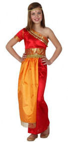 Girls Indian Bollywood Fancy Dress Costume