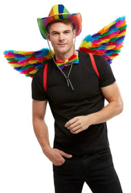 Adults Rainbow Feather Wings