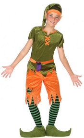 Boys Naughty Goblin Fancy Dress Costume