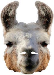 Adult Llama Fancy Dress Mask
