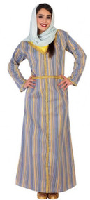Ladies Arabian Innkeeper Fancy Dress Costume