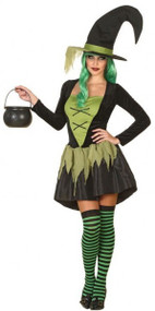 Ladies Green Wicked Witch Fancy Dress Costume