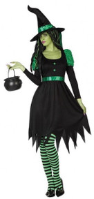 Ladies Wicked Witch Fancy Dress Costume