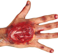 Adult Hand Tendon Special Effect