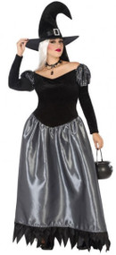 Ladies Silver Witch Fancy Dress Costume
