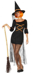 Ladies Sexy Halloween Witch Fancy Dress Costume