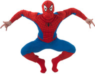Mens Spiderman Fancy Dress Costume