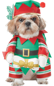 Dog Christmas Elf Fancy Dress Costume