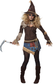 Ladies Deluxe Spooky Scarecrow Fancy Dress Costume