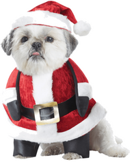 Dog Santa Claus Fancy Dress Costume