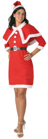 Ladies Mother Christmas Fancy Dress Costume