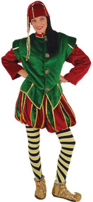 Adults Professional Elf Fancy Dress Costume
