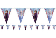 Frozen 2 Party Bunting