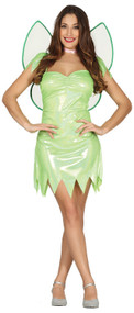 Ladies Green Magic Fairy Fancy Dress Costume