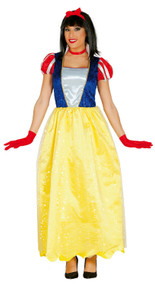 Ladies Snow Princess Fancy Dress Costume