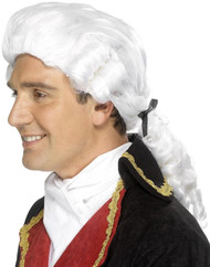 Adult Court Judge Fancy Dress Wig