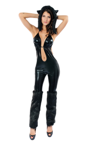 Ladies Black Cat Fancy Dress Costume