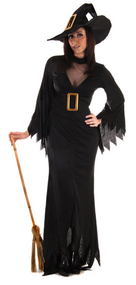 Ladies Full Length Witch Fancy Dress Costume
