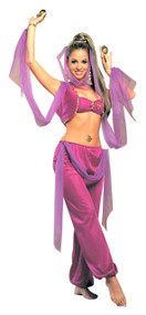 Ladies Arabian Princess Fancy Dress Costume