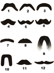 Adult Self Adhesive Moustache