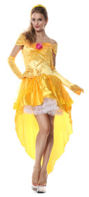 Ladies Sexy Beauty Fancy Dress Costume