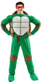 Mens Teenage Mutant Ninja Turtle Fancy Dress Costume